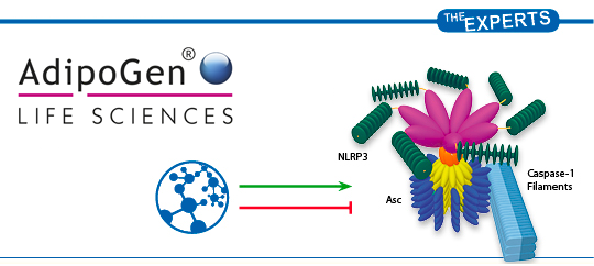 Inflammasome Research Adipogen Life Sciences