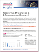 Gasdermin D Signaling and Inflammasome Research