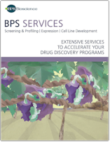 Services BPS