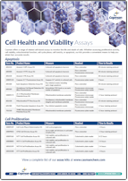 Assays_to_Assess_Cell_Health